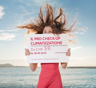Check-up Climatizzatione 2018